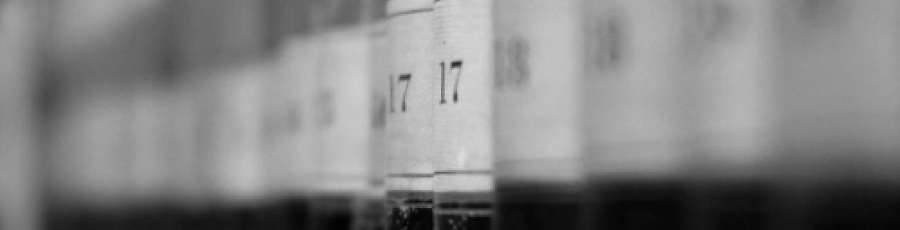 Anuncio previsto no art.º 3º do Dec. Lei nº 123/2017